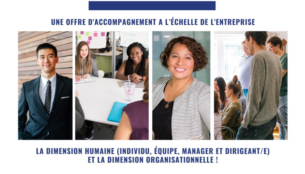 Coaching d'Organsation